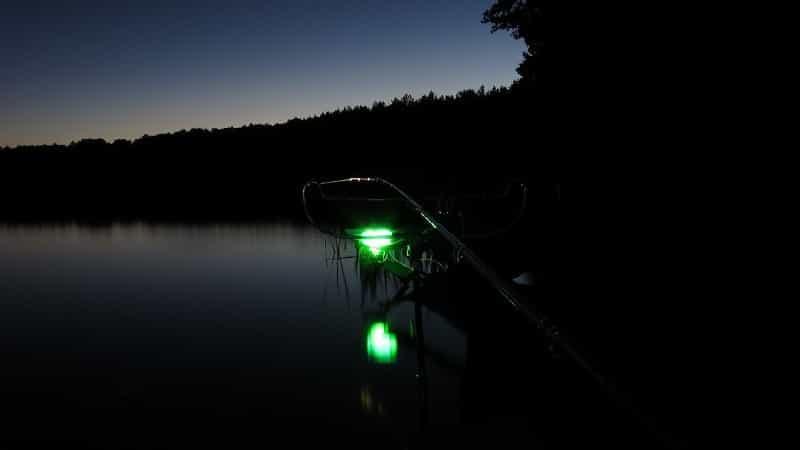 Lighting on night fishing