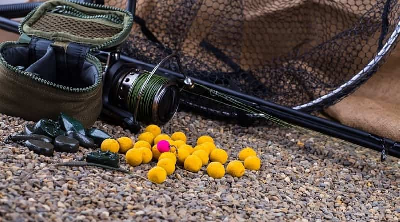 Use of attractants for carp fishing