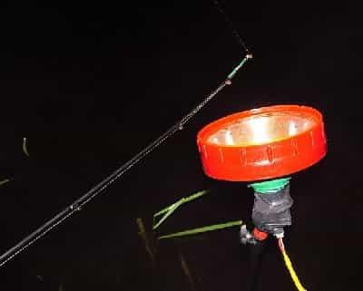 Iluminación en la noche la pesca de la carpa
