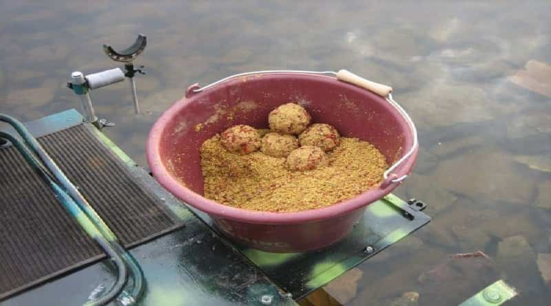 Bait for fish in cold water