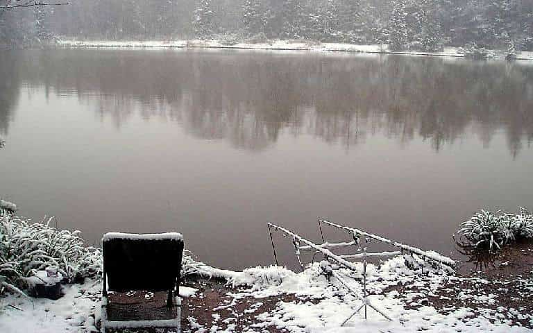 How to catch carp in winter