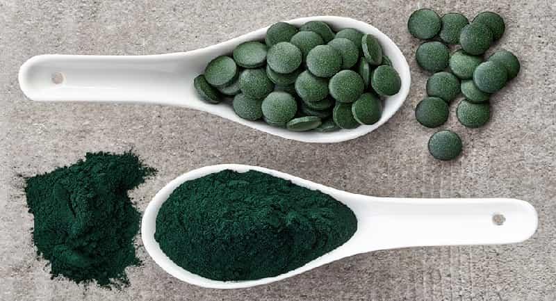 algues en poudre