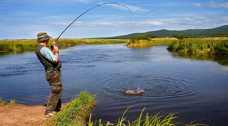 How to catch carp in a river