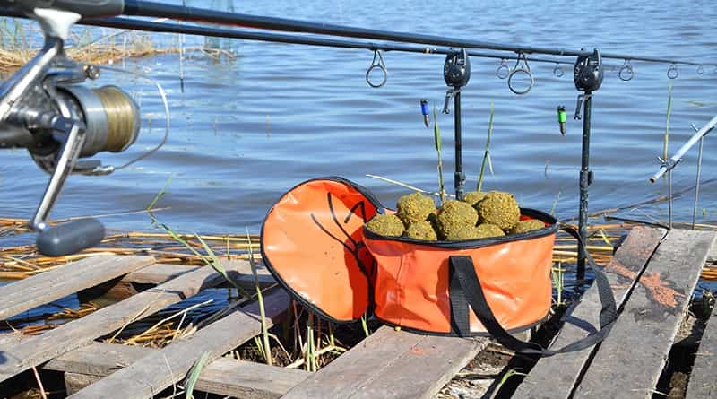 Increase the attractiveness of bait for carp