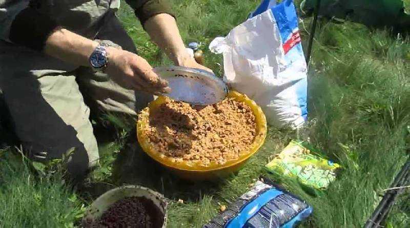 Homemade recipes for the best carp bait